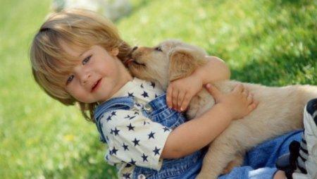Первое домашнее животное для ребенка